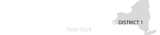 CWA D1 New York